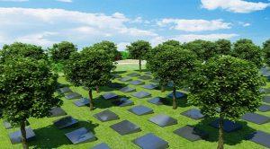 推行节地生态葬的重要意义
