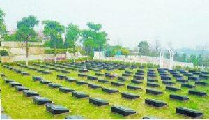 如何吸引群众选择节地生态安葬?