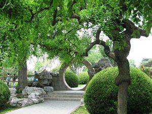 郑州北邙天和园提升项目